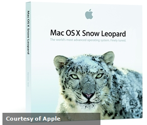 Apple has stopped security updated for Snow Leopard.