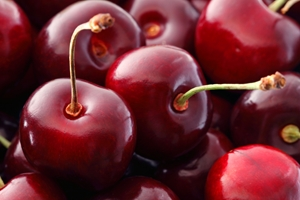 The positive experience of the 2013 cherry season encouraged Chelan Fresh to expand its adoption of FileMaker.